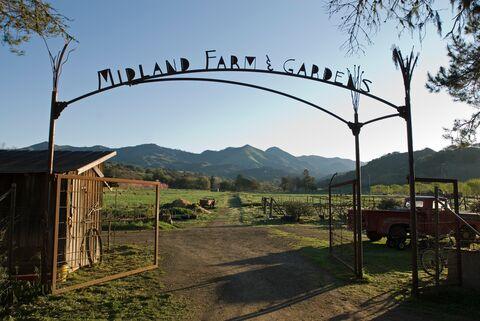 ca_midlandschool