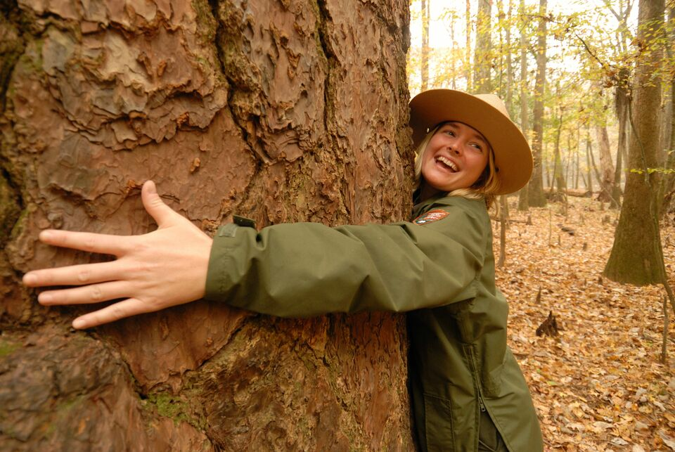 A park ranger wraps her arms around a tree